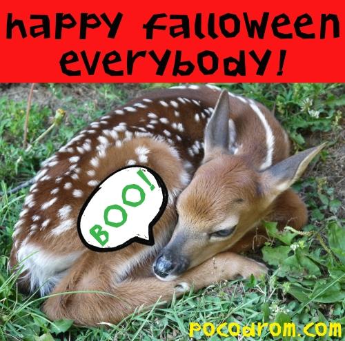 happy falloween copy