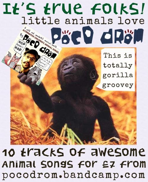 baby gorilla with poco cd flyer copy
